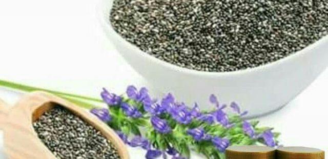 Apa itu Chia Seed?